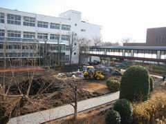 20101224_05